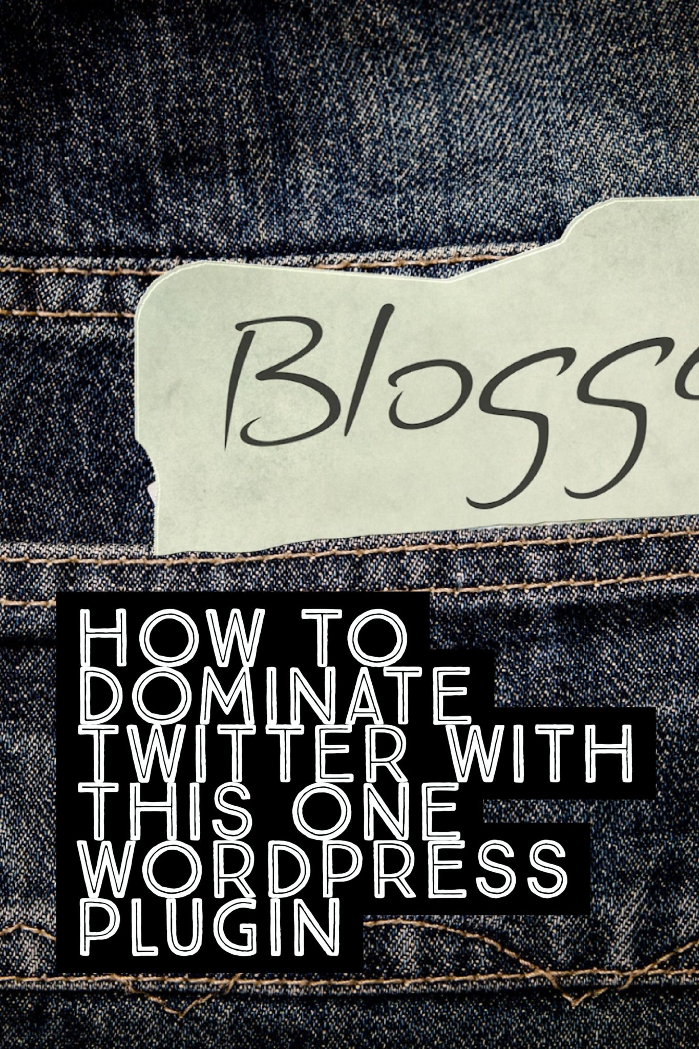 Twitter can be hard these days for a blogger. But with this one WordPress Plugin, you'll be able to dominate Twitter and get more blog shares! Click through to read more. :)